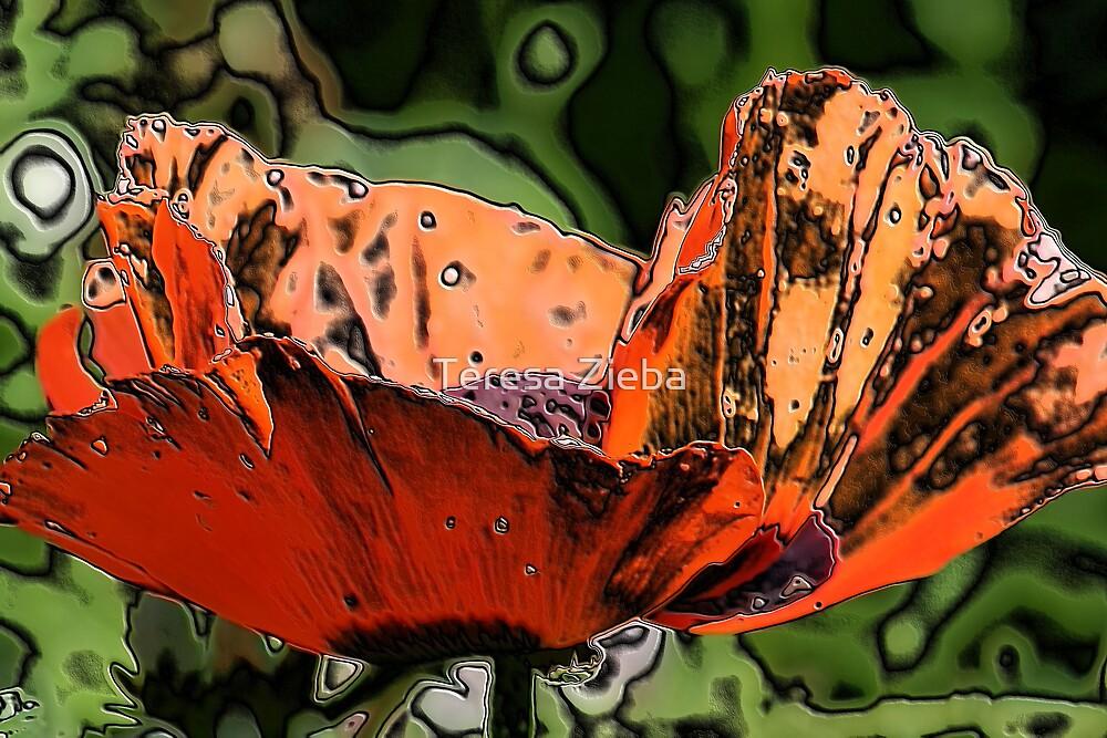 Poppy by Teresa Zieba