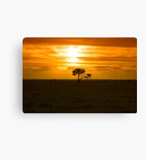 South Australian Sunset Canvas Print
