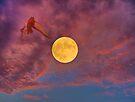 """in flight by Antonello Incagnone """"incant"""""""