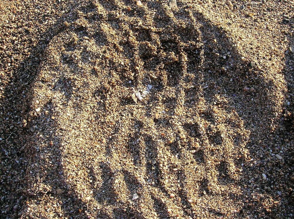 Footprint by Jeremy Muratore