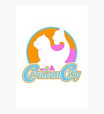 Cerulean City Gym Pokemon  Photographic Print