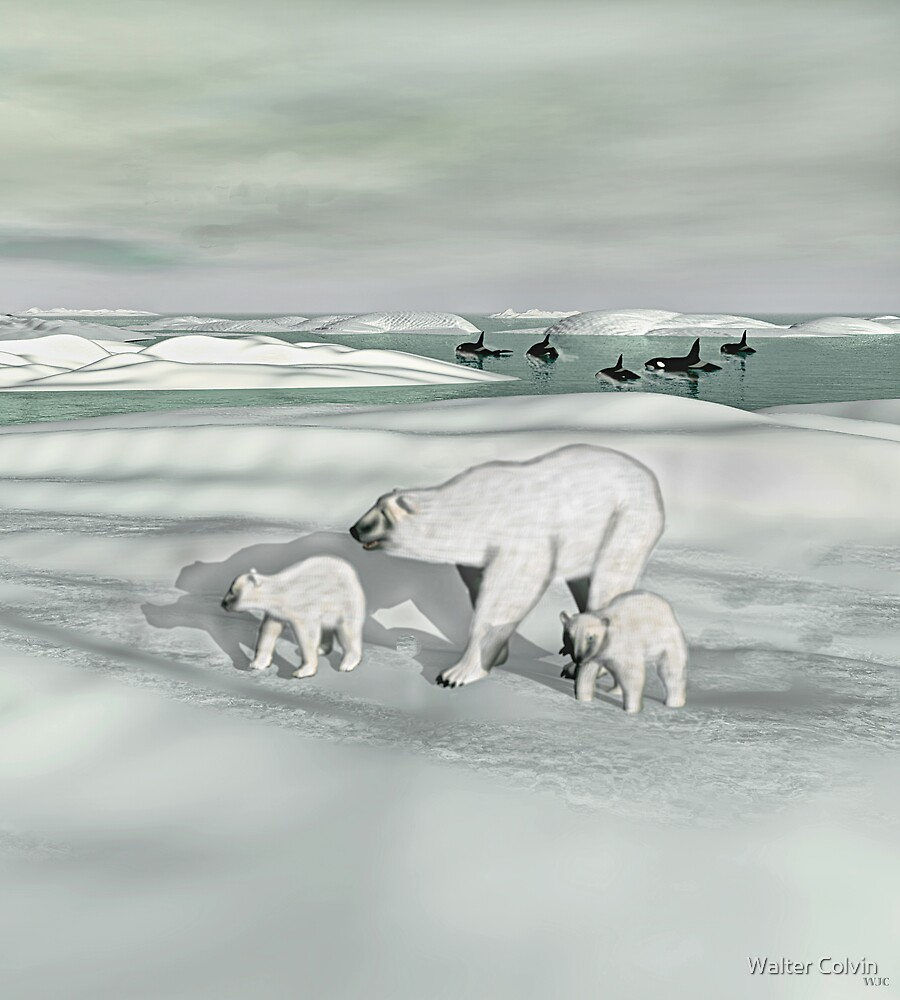 Mother Polar Bear and Cubs by Walter Colvin