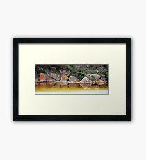 Tidal Reflection Framed Print