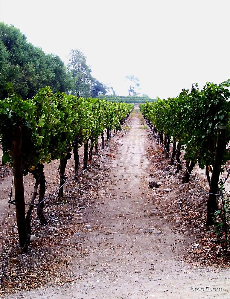 vineyard by brookworm