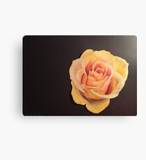 Yellow Colored Pencil Rose Canvas Print