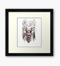 Deer Portrait. Woodland Series Framed Print