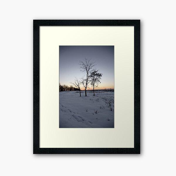 The Three Framed Art Print