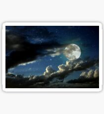 Noche Sticker