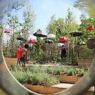 Festival Garden by John Thurgood