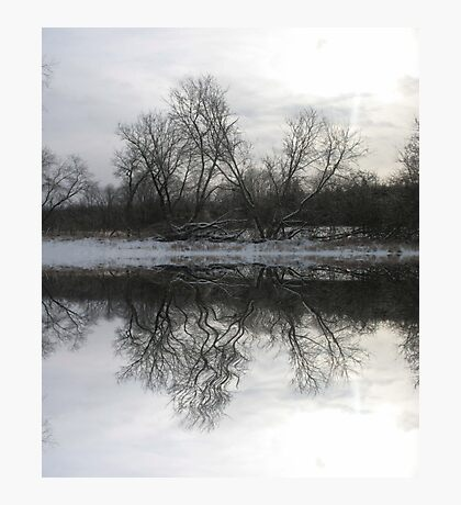 A Frozen Moment Photographic Print