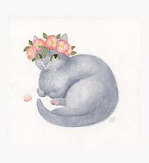 Grey Cat With Pink Flowers Photographic Print