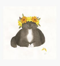 Black Cat With Yellow Flowers Photographic Print