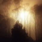 Foggy Sunrise - West Coast - New Zealand by Imi Koetz