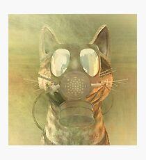 Schrödinger underestimates the cat Photographic Print