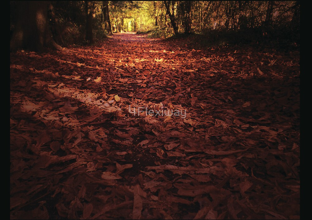 Autumn by 4Flexiway
