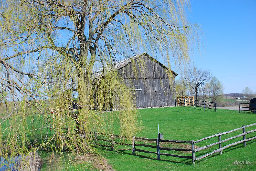 a barn on old church road in caledon east by deville