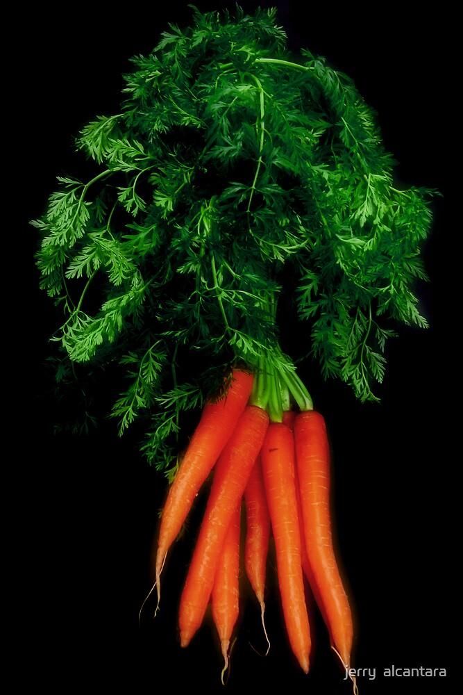 Carrots! by jerry  alcantara
