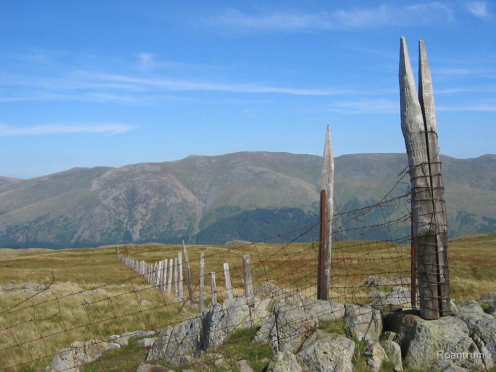 Fence on Ullscarf by Roantrum