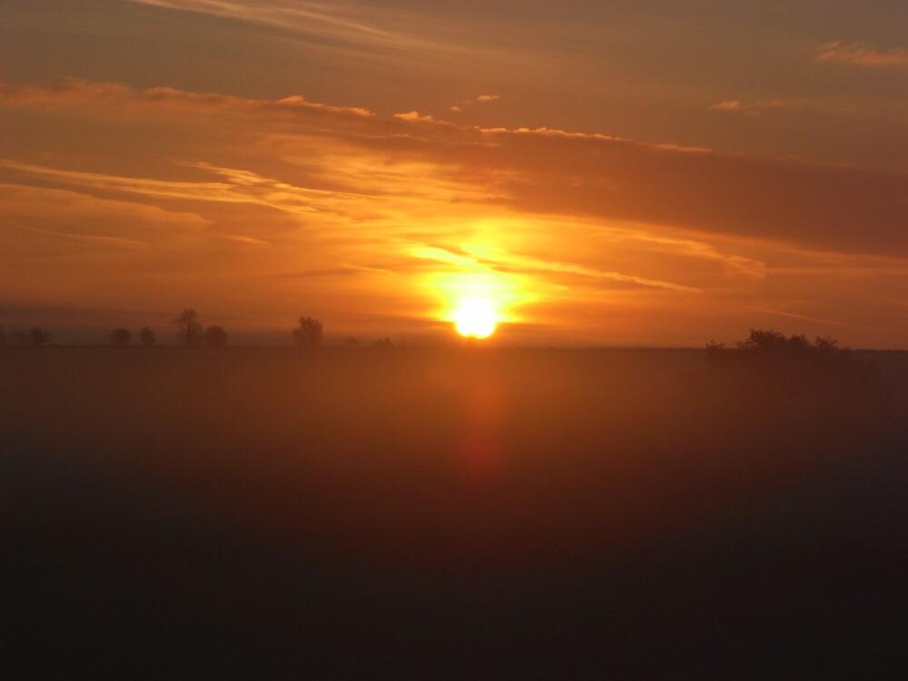 Autumnul Dawn by kibblerdon