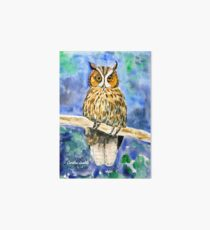Wise Owl Art Board