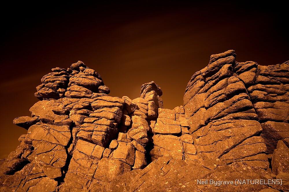 Hound Tor Rocks by Neil Bygrave (NATURELENS)
