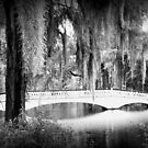 Magnolia Bridge by Forget-me-not