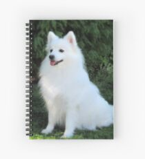 Snow White Spitz Spiral Notebook