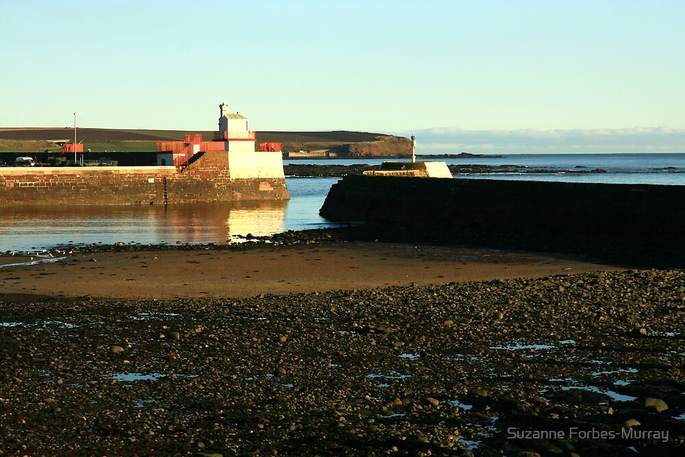 Harbour Entrance Arbroath by Suzanne Forbes-Murray