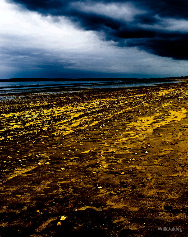 Camber Sands Golden Streaks by WillOakley