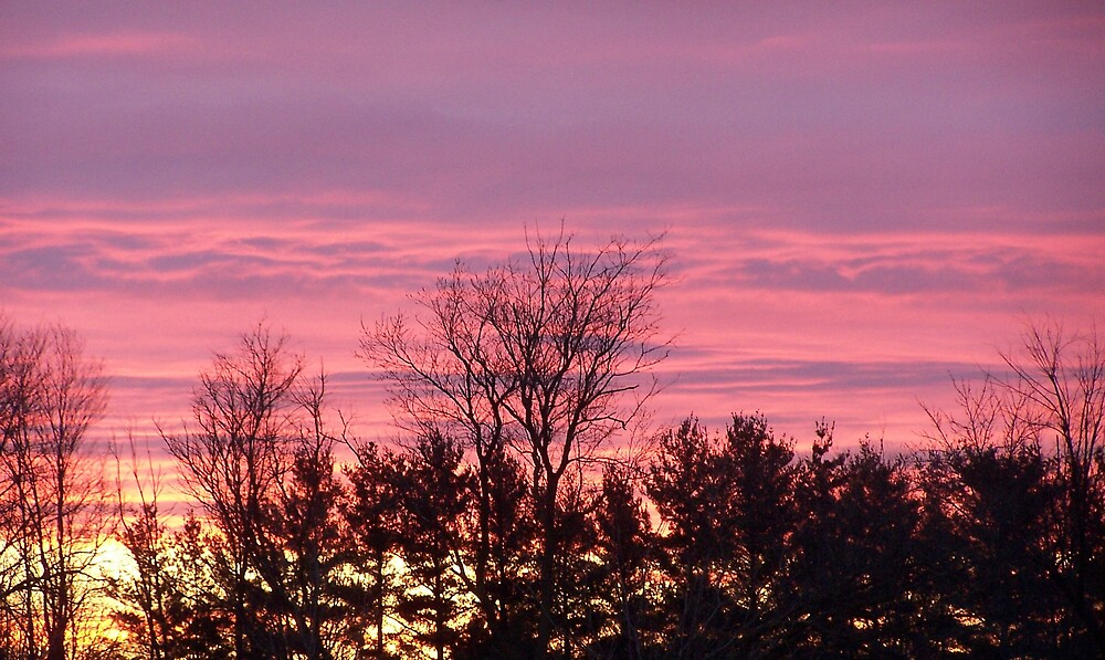Sunrise by Norris01