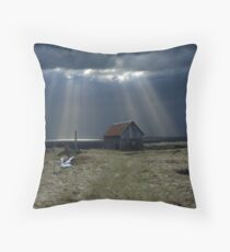 The old barn! Throw Pillow