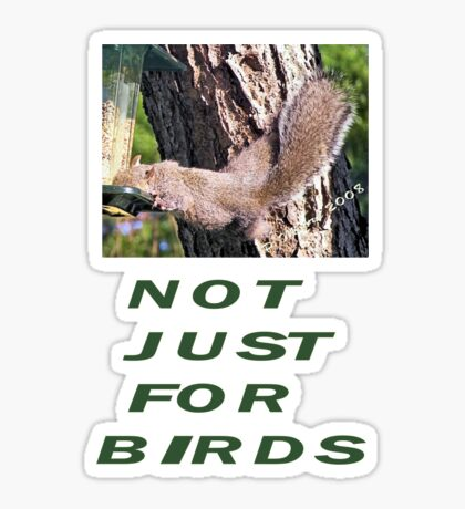 Not Just For Birds Sticker