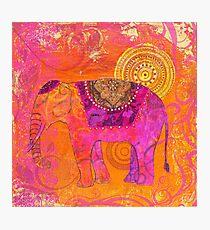 Happy Elephant II Photographic Print
