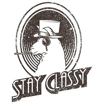 Stay Classy Llama by karlos