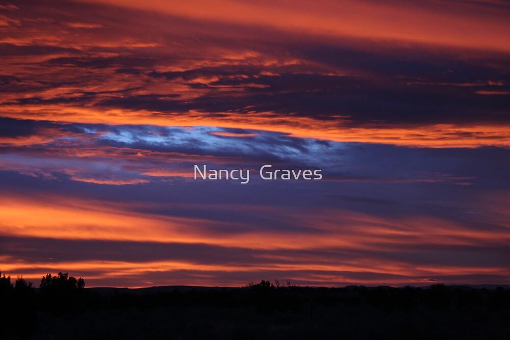 Valle Sundance by Nancy  Graves