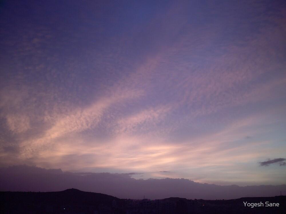 violet sky by Yogesh Sane