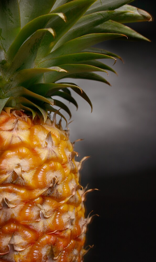 Pineapple 2 by Alecia Scott