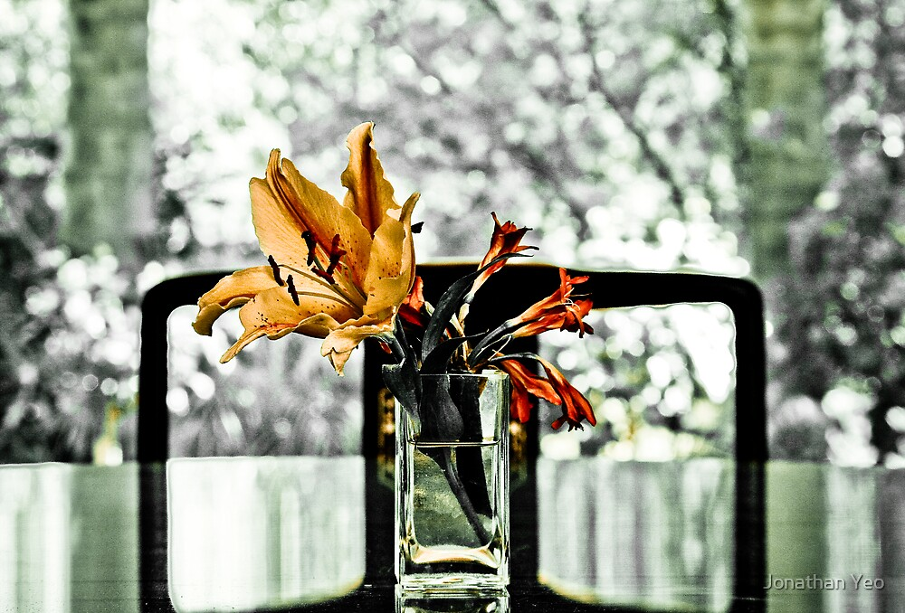 Reflections by Jonathan Yeo