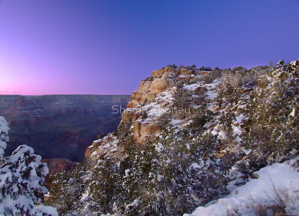 Sunset Glow Over the Canyon II by Shawn Cooney