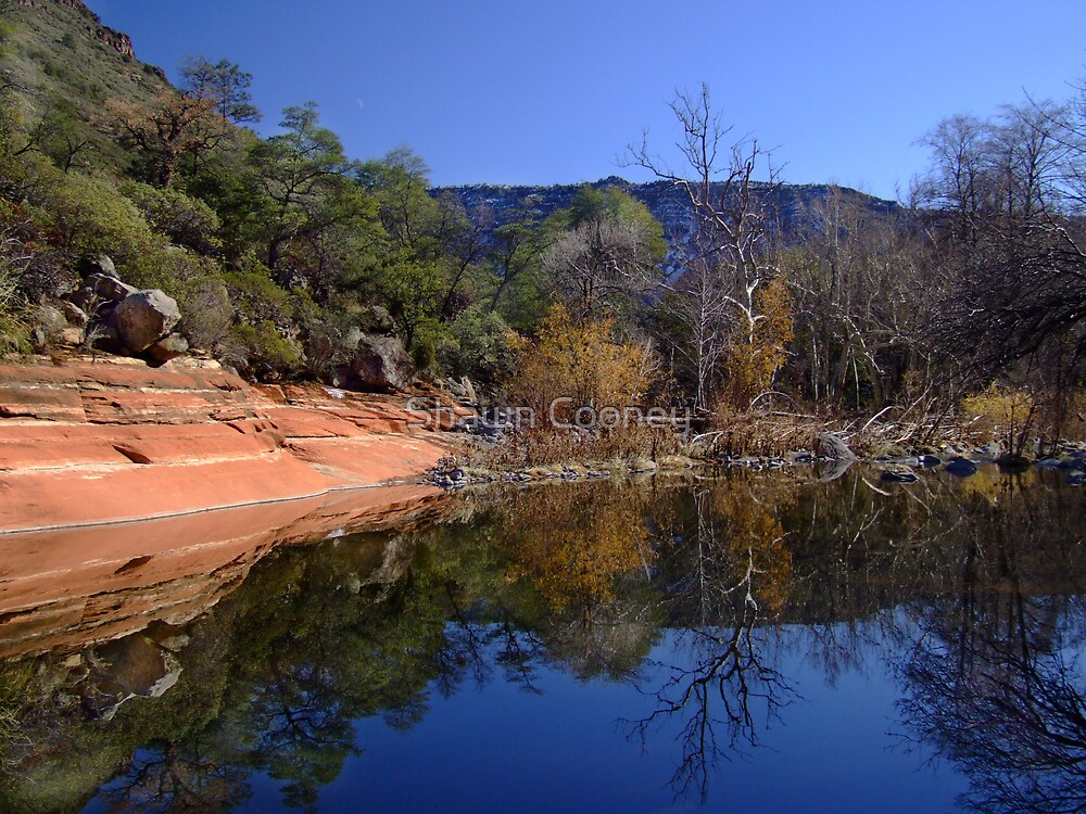 Sedona Calm by Shawn Cooney