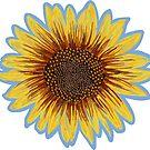 Sunflower by ShantyShawn