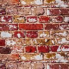Wall Of Old Red Brick by gnoul4400