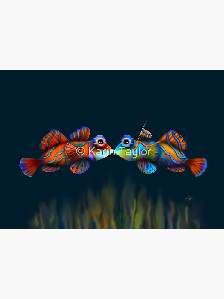 Mandarinfish by karin