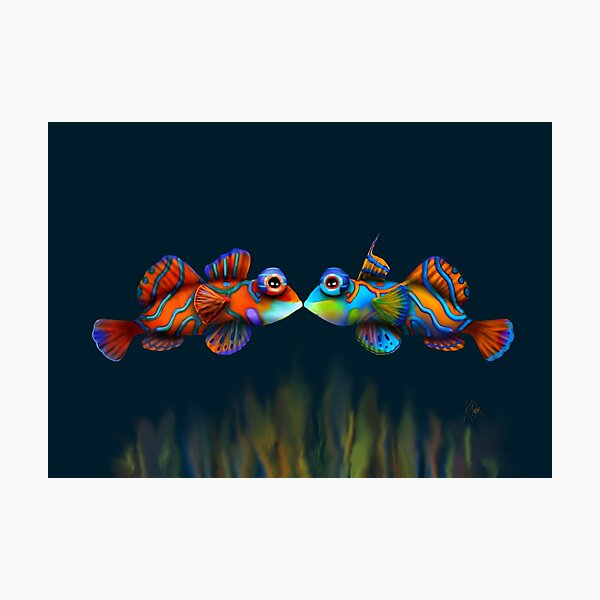 Mandarinfish Photographic Print