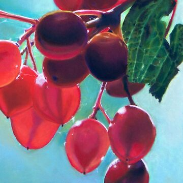 Backlit Berries by Hopemartinart