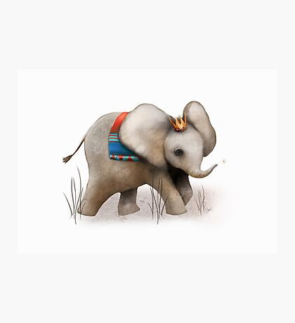 The Baby Elephant Prince Photographic Print