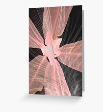 Pink cassia flower on black Greeting Card