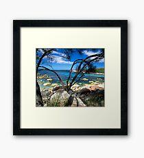Blue Waters, Bay Of Fires, Tasmania Framed Print