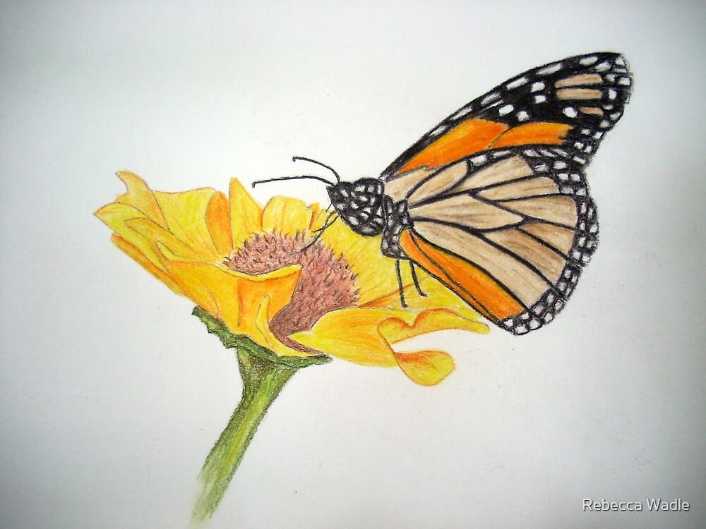 My little butterfly by Rebecca Wadle