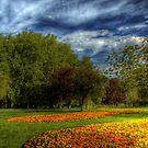 Summer at Last by Alan Watt